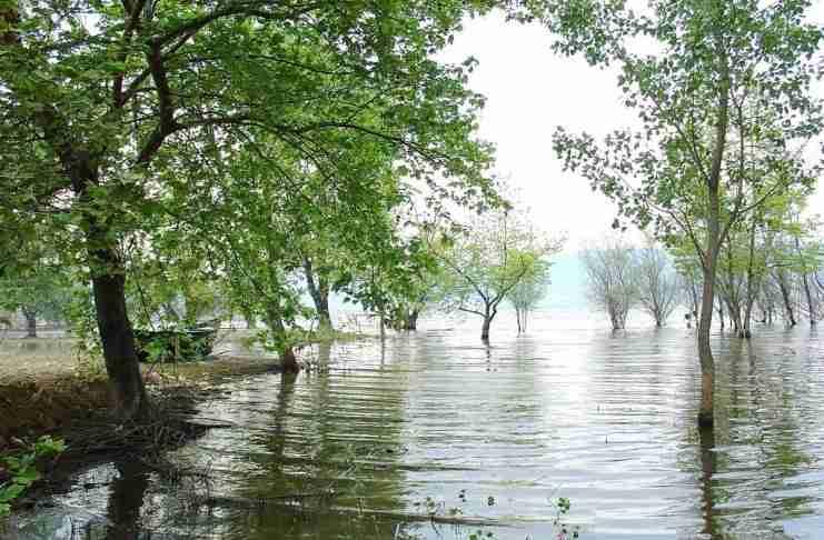 Βόλβη: Η δεύτερη μεγαλύτερη λίμνη της Ελλάδας μοιάζει με.. μικρή θάλασσα