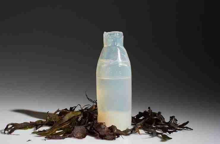 Μπουκάλια νερού από φύκη καταργούν τα πλαστικά
