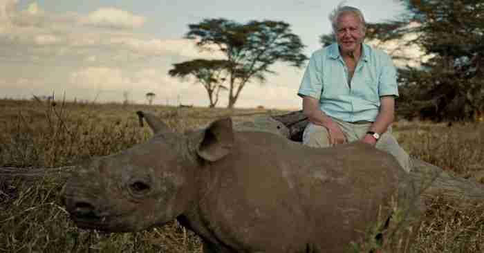 Το ωραιότερο βίντεο που δημιουργήθηκε ποτέ για τη φύση διαρκεί μόνο 2 λεπτά