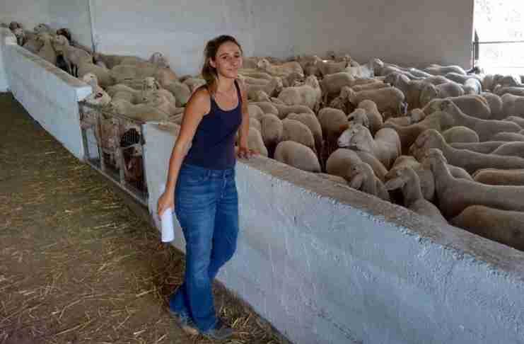 Από ηθοποιός στο Λονδίνο έγινε κτηνοτρόφος στο Αιτωλικό και άλλαξε τη ζωή της
