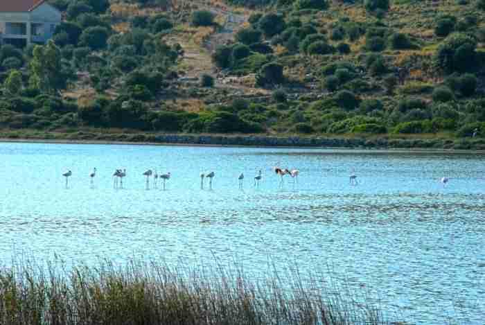 Στο κοντινότερο σημείο των θαλασσίων συνόρων Ελλάδας - Τουρκίας βρίσκεται μια μαγευτική παραλία