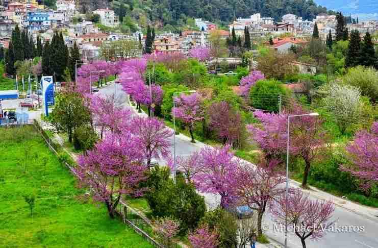 Ο ωραιότερος δρόμος στην Ελλάδα βρίσκεται στα Γιάννενα