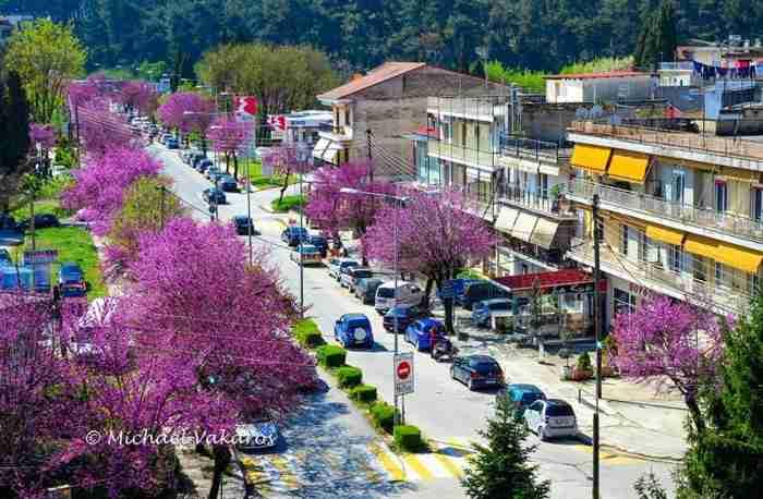 Ο δρόμος με τις κουτσουπιές στα Γιάννενα σε 10 ονειρεμένες φωτογραφίες