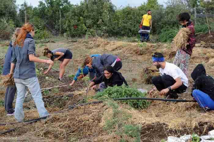 """Το πρώτο οικολογικό """"χωριό"""" αυτάρκειας και βιωσιμότητας στην Ελλάδα βρίσκεται στην Εύβοια"""