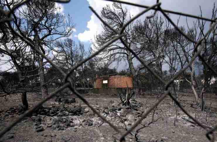 Πώς δημιουργείται ένα φυσικό τείχος προστασίας ενάντια στις πυρκαγιές; Ένας δασολόγος απαντά
