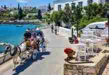 """""""Το πιο μαγικό νησί της Ελλάδας"""": Διάσημος συγγραφέας γράφει ύμνους στην Telegraph για τις Σπέτσες"""