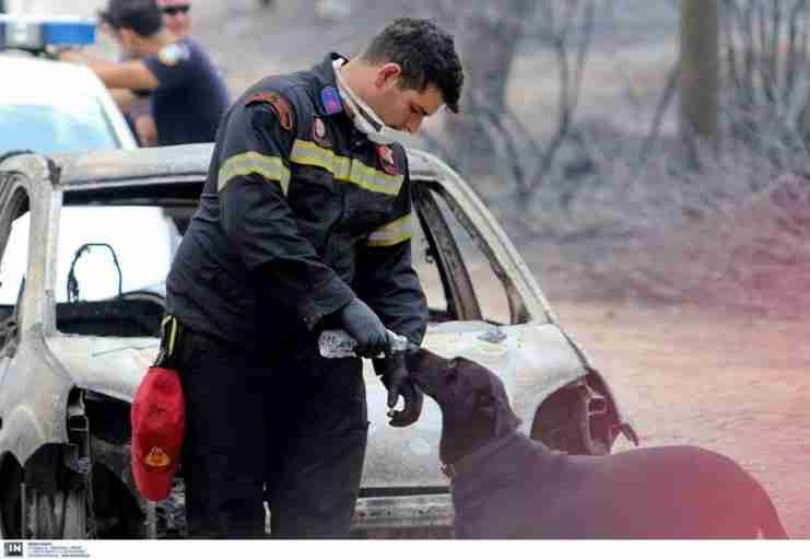 Τα σημεία συγκέντρωσης αγαθών και αλληλεγγύης στα θύματα των πυρκαγιών