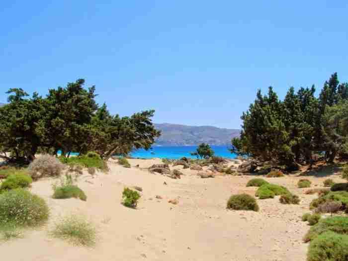 Λες και είσαι στην Αφρική.. Η άγνωστη ελληνική παραλία που βρίσκεται στις καλύτερες παρθένες παραλίες της Ευρώπης