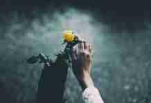 Ευαισθησία: Ευλογία ή μήπως μεγάλη κατάρα;