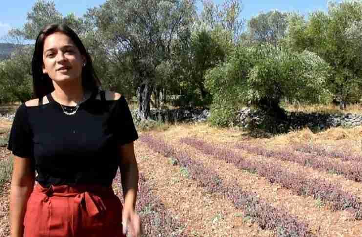 Τελικά παράγει εισόδημα για την Αργυρώ το «άχρηστο οικογενειακό χωραφάκι»