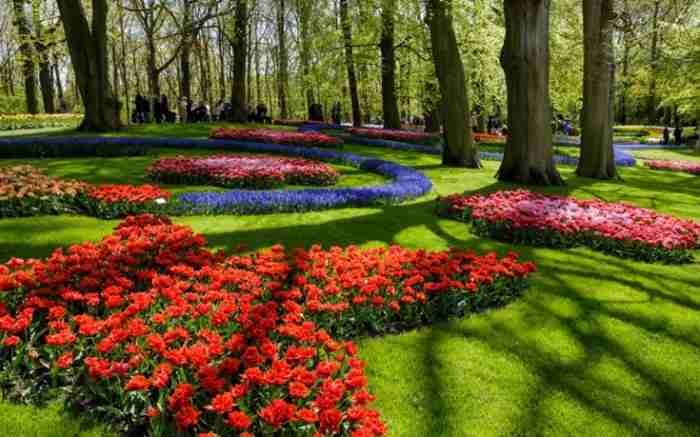 Keukenhof: Ο φημισμένος «Κήπος της Ευρώπης» στην Ολλανδία που γεμίζει με τουλίπες