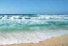 Η ζωή είναι σαν τη θάλασσα. Δεν δίνει δεκάρα αν δεν ξέρεις κολύμπι