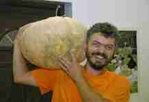 Ο Έλληνας που έσωσε τους παραδοσιακούς σπόρους